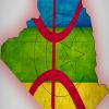 Nouvelle constitution : une petite porte pour tamazight et de gros verrous pour protéger l'arabe