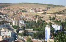 Saisie de plus de 400 kg de viande à Tiaret
