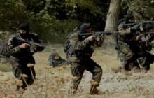 Un dangereux terroriste éliminé par l'ANP dans les maquis de Jijel