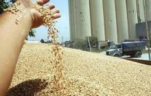 Le coût d'importation des céréales est de 2,54 milliards de dollars