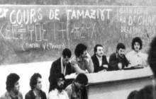 Les langues amazighes en voie de disparition (II)
