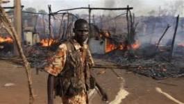 L'aviation soudanaise bombarde le Soudan du Sud