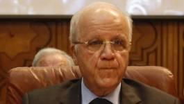 L'Algérie met les formes pour reconnaître le CNT
