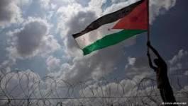 Un Palestinien tué, des dizaines blessés par Ies forces israéliennes
