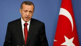"Erdogan accuse : la France a commis un ""génocide"" en Algérie"