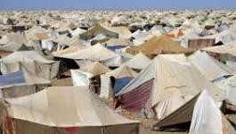Une délégation du parlement africain dans les territoires sahraouis occupés