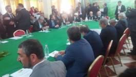 La conférence de l'opposition a commencé ce matin à Mazafran (actualisé)