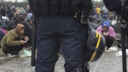 Retour de Calais : l'homme est-il vraiment un loup pour l'homme ?