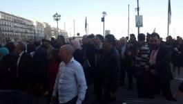 Bronca à l'APN, les députés de l'opposition se rebiffent (en images)