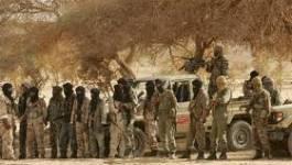 Premiers contacts entre les nouvelles autorités maliennes et le MNLA