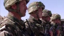 Des armes de guerre et des munitions saisies à Bordj Badji Mokhtar par l'armée