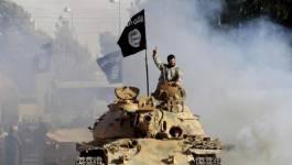 Terrorisme et manipulation : combien de divisions ?!