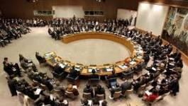 Massacre de Houla : le Conseil de sécurité condamne Damas
