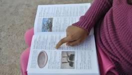 Colloque international en mars à Béjaïa sur la confection de dictionnaires monolingues amazighes