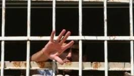 Plus d'un millier de détenus palestiniens en grève de la faim