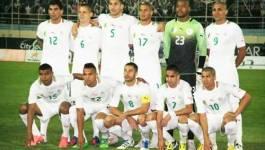 Classement FIFA : l'équipe nationale algérienne progresse