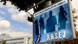 2700 jeunes de l'Ansej en cessation de paiement à Oran