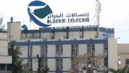 Vol de câbles à Oran : 12 milliards de pertes pour Algérie Télécom