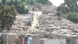 Opération de démolition de 19 constructions illicites à Oran