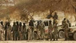 Al Qaïda au Maghreb islamique : la toile d'araignée
