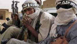 Terrorisme islamiste et trafic de drogues au Sahel