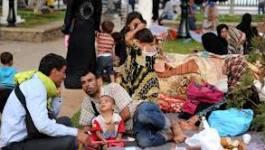 12 000 réfugiés syriens arrivent en Algérie