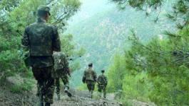 Boumerdès : un terroriste capturé par l'ANP à Ammal
