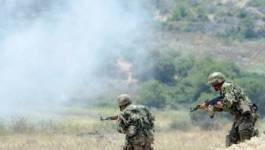 Boumerdès : 9 terroristes abattus par les soldats de l'ANP