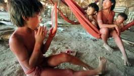 Venezuela : la tribu Yanomami massacrée en Amazonie