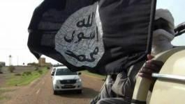 Le Mouvement pour l'unicité et le jihad (Mujao) lance un ultimatum à Alger