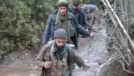 Ouadhias (Tizi Ouzou): un terroriste arrêté