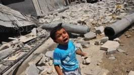 Syrie : un hélicoptère s'écrase près de Damas et Alep sous les bombes