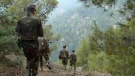Boumedfaa (Aïn Defla) : un terroriste abattu