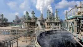 Les phosphates au Maghreb : enjeu politique, enjeu d'avenir