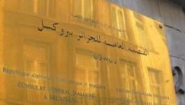 Bruxelles : une Algérienne malmenée par le consul d'Algérie !