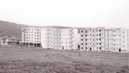 Oran : le foncier agricole perd du terrain au profit du béton