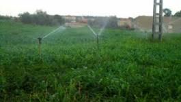 Extension de la surface des terres agricoles à Relizane