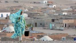 Les camps sahraouis de Tindouf : la menace terroriste pèse toujours