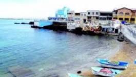 Mers El-Hadjadj : menace de grève de faim à l'entreprise étrangère AOA