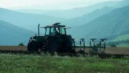 Oran /agriculture : 122 mises en demeure ont été remises aux exploitants défaillants