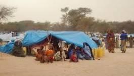 Mali : Amnesty international appelle à la protection des civils