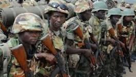 Mali : la France et des armées africaines viennent en soutien