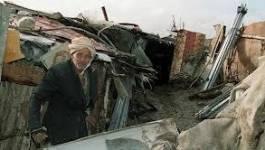 Vaste opération de démolition des constructions illicites à Oran
