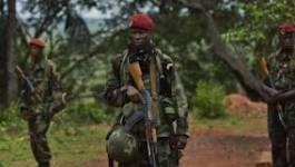 Centrafrique : Alindao et Kouango tombent aux mains des rebelles
