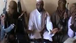 Nigeria : des islamistes de Boko Haram égorgent trois médecins chinois
