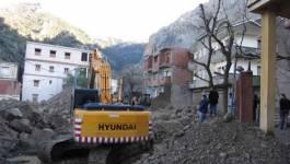 Tizi Ouzou : 70 ha de cèdres pour protéger Illilten des crues de boue