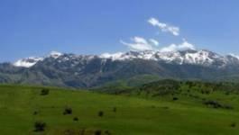 Amagar n'Tafsut : l'accueil du printemps