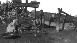L'Etat central et la mort des territoires : l'exemple de l'oléiculture en Kabylie
