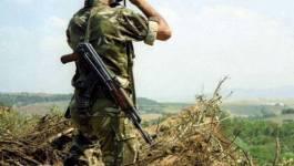 Les unités de l'ANP éliminent douze terroristes à Chlef et à Boumerdes