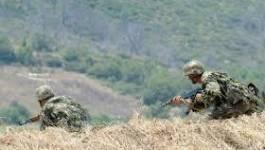 Tipasa : un terroriste abattu par l'ANP à Damous